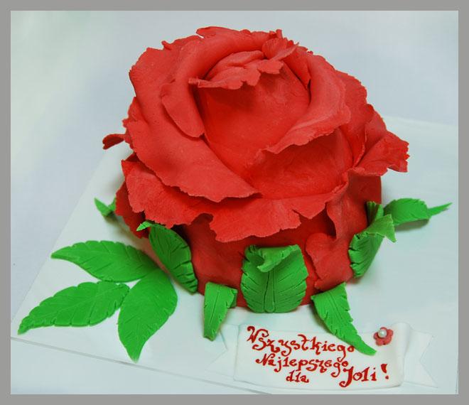 roza_1.jpg